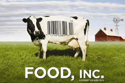Cow in a field with a bar code on it