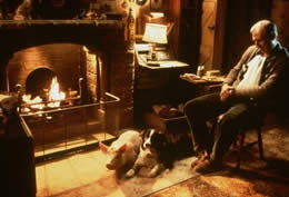 A sleeping man sits in front of a fire next to a pig and a dog