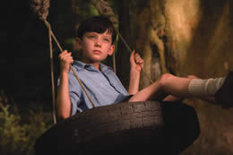 A young boy looks into the distance whilst swinging on a tyre