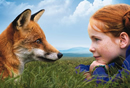 Still profile of a fox lying on the grass looking at a girl