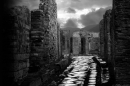 A black and white image from the Pompeii exhibition